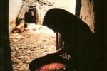 Molinologia Portuguesa 2008 :: Convite à apresentação de propostas de artigos para publicação